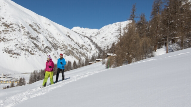 Livigno in winter - Mountaineering, snowshoes and trekking